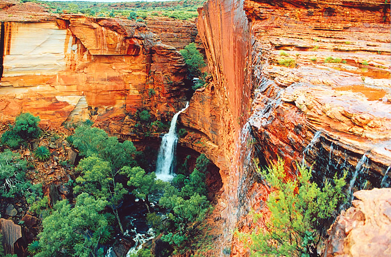 Kings Canyon Australia  city photos : Full day Kings Canyon tour. From $219.00 per person